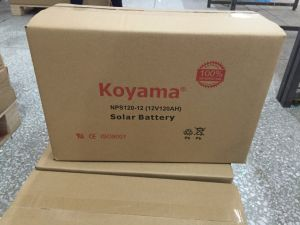 Wholesale New Product Dry Cell 12V Solar Battery Nps100-12 pictures & photos