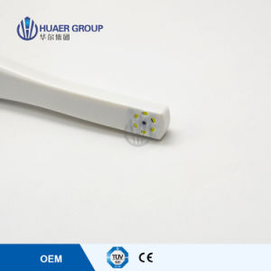 Newest Rechargeable Intraoral Camera with Ce pictures & photos