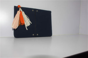 2018 Spring & Summer Hot Sales Colorful Tassels Clutch Pouch for Ladies Xr101802 pictures & photos