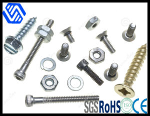 Bolt Screw pictures & photos