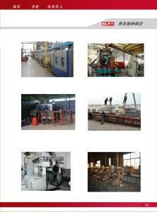 The Olpy Reliable Wb450 Industrial Furnace Nozzle pictures & photos