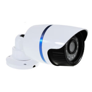 Professional CCTV Cameras Supplier Waterproof Ahd Surveillance Camera Analog Camera with IR Range 30m pictures & photos