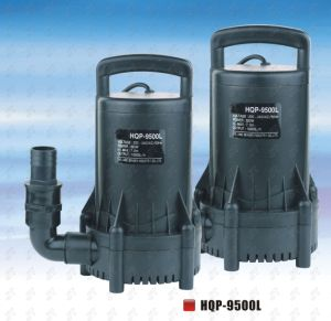 Submersible Pump (HQP-9500L) for Pond pictures & photos