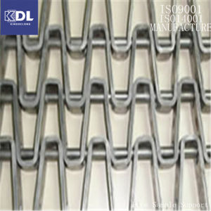 Stainless Steel SUS 304 316 Supplier Good Price Belt Conveyor pictures & photos