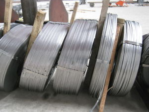 Steel Strip/Steel Tape pictures & photos