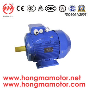 Ie3 Premium Efficiency Electric Motor pictures & photos