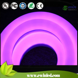 Newest Design IP65 Mini Neon Lighting for Architecture Lighting Outside pictures & photos
