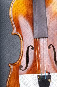 Violin / High Grade Violin/ Professional Violin 4/4 (VLA-1) pictures & photos