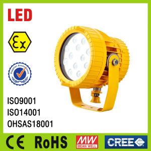 LED Hazardous Area Spotlight