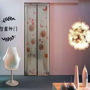Factory Price Magnetic Door Screen pictures & photos