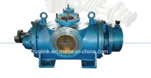 Twin Screw Pumps for Fuel Oil/Heavy Oil with Classification Society Certificate pictures & photos