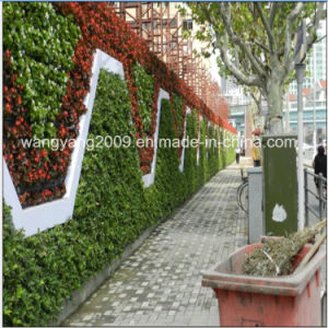 Hot Sale Hotel Restaurant Evergreen Flower Plant Wall
