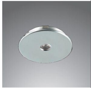 COB LED Down Light (HJ-LED-209)