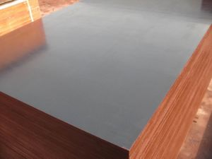 Black Film Faced Plywood/Poplar Core/Construction Material/Wood /Wood/MDF
