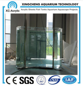 Bending of The Aquarium Glass pictures & photos