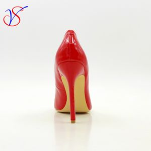 Sex Lady Women High Heel Dress Shoes for Party Sv-Wf 003 pictures & photos