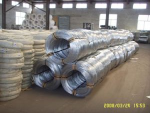 Electrical Wire/Electro Galvanized Iron Wire (XM-11) pictures & photos