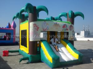 Inflatable Bouncers, Inflatable Combo (B3051) pictures & photos