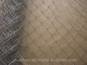 High Quality Chain Link Fence (PVC coated and galvanized) pictures & photos