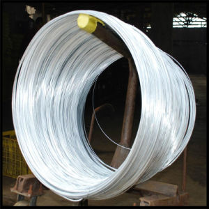 Bwg18 Electro Galvanized Tie Wire pictures & photos
