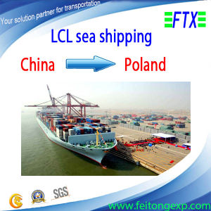 Sea Shipping From China to Lodz/Lublin Poland