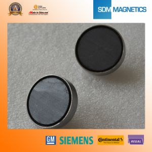 Customized Small Strong Neodymium Magnetic Assembly pictures & photos