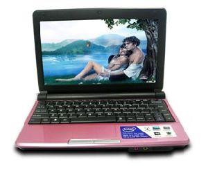 Mini Netbook Laptop Computer (N01N)