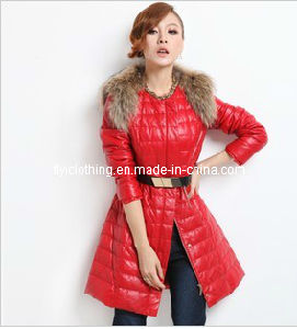 Ladies Down Coat with Fur Neck (YR0015)