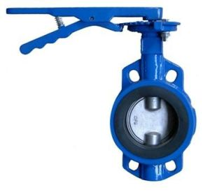 China Manufacture Butterfly Valves Customer Sized pictures & photos