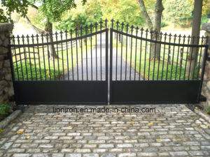 Simple Design Wrought Iron Exterior Door, Gates for Park pictures & photos