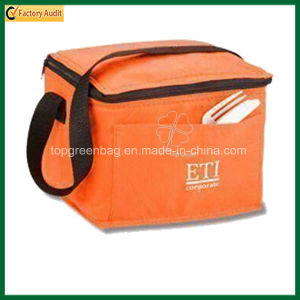 PP Non Woven Insulated Lunch Cooler Bag (TP-CB407) pictures & photos