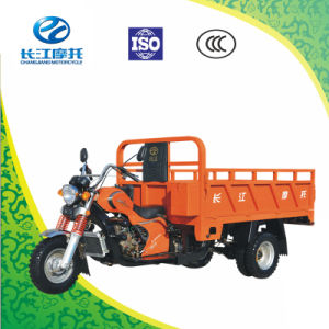 Wholesale 5 Wheels Motorized Tricycle for Cargo with Open Body