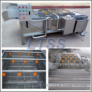 High Pressure Air Bubble Vegetable Washing Machine/Vegetable Cleaning Machine pictures & photos