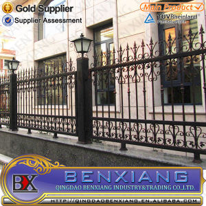 House Metal Fence Steel Fence Designs Power Coating Steel Fence pictures & photos