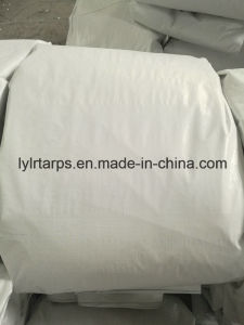 White Polyethylene Tarpaulin Sheet, PE Tarp Cover pictures & photos