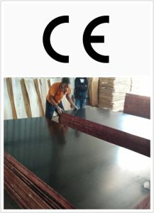 21mm Finger Joint Plywood for Shuttering (HBR026) pictures & photos