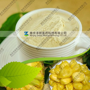 Manufacturer Supply Natural Jackfruit Powder pictures & photos