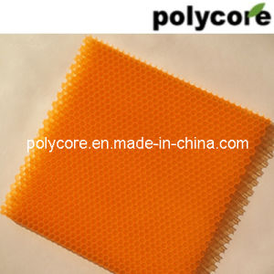 Plastic Honeycomb Panel (orange PC6.0) pictures & photos