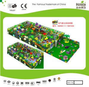 Kaiqi Large Indoor Playground - Available in Many Colours (TQBT540A) pictures & photos