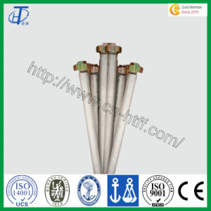 Magnesium Rod Anode in Solar Water Heater pictures & photos