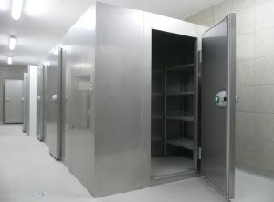 Blast Cold Room /Small Deep Freezer (LAIAO) pictures & photos