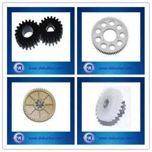 Precision Custom Nylon Transmission Gear (DKL-G1208) pictures & photos