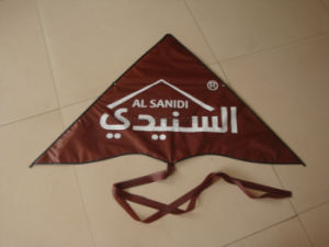 Advertising Triangle Shape Logo Gift Kite pictures & photos