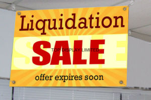 Custom Outdoor Indoor Advertising PVC Vinyl Flex Mesh Canvas Banner pictures & photos