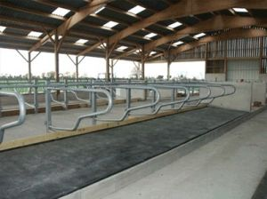 Interlocking Cow Horse Mats Interlocking Rubber Mat Agriculture Rubber Mat pictures & photos