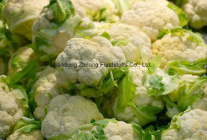Frozen Cauliflower with High Quality pictures & photos