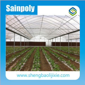 Factory Price Easily Installed Agricultural Greenhouse pictures & photos
