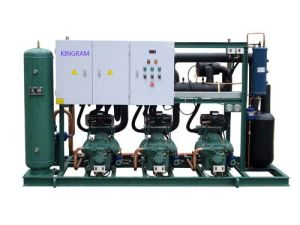 3 Parallel Bitzer Condensing Unit (AIR-COOLING STYLE)