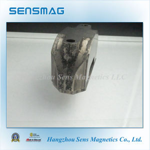 Customized Manufacture Permanent AlNiCo Horseshoe Motor Magnet pictures & photos