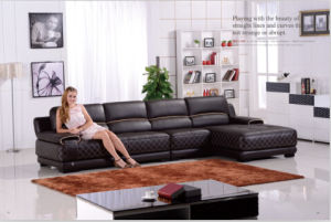 Living Room Furniture Modern Leather Sectional Sofa with L Shape pictures & photos